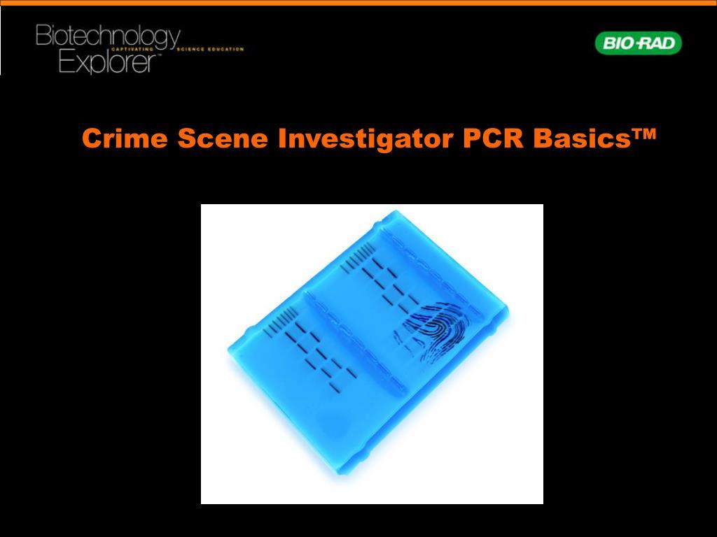 Crime Scene Investigator PCR Basics™