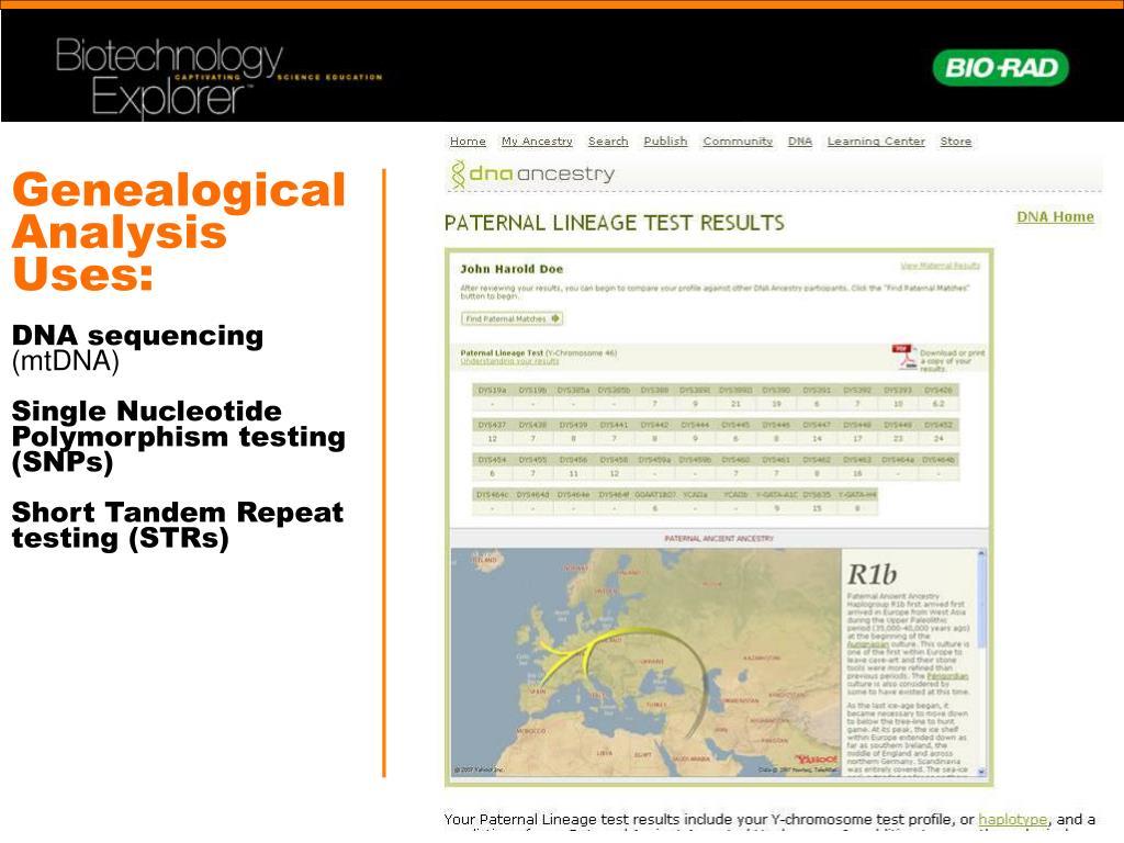 Genealogical Analysis Uses: