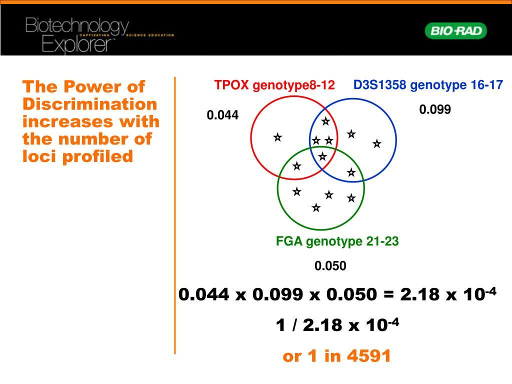 TPOX genotype8-12