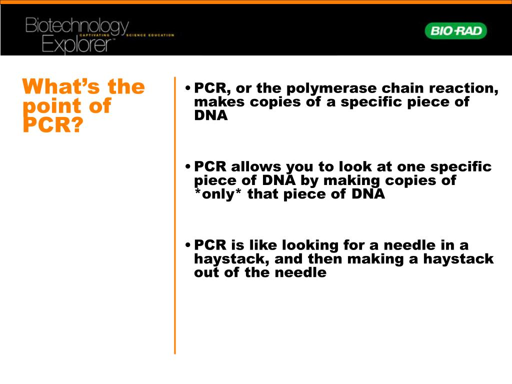 What's the point of PCR?