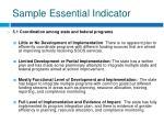 sample essential indicator