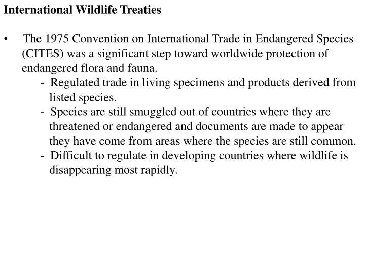 International Wildlife Treaties
