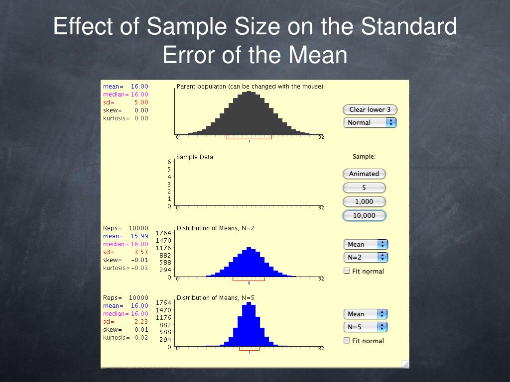 Effect of Sample Size on the Standard Error of the Mean