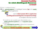 economic feasibility for which multilingual resources to invest