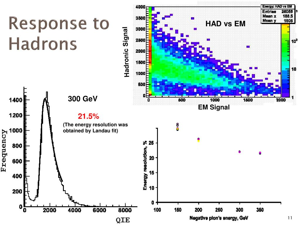 Response to Hadrons