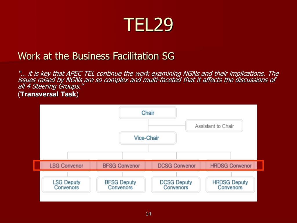 TEL29