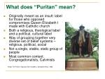 what does puritan mean