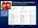 pulmonary vein isolation segmental approach