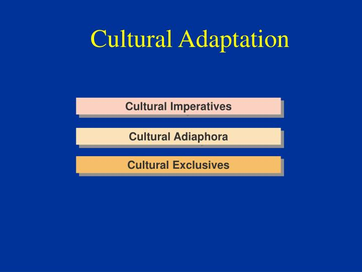 Cultural Adaptation