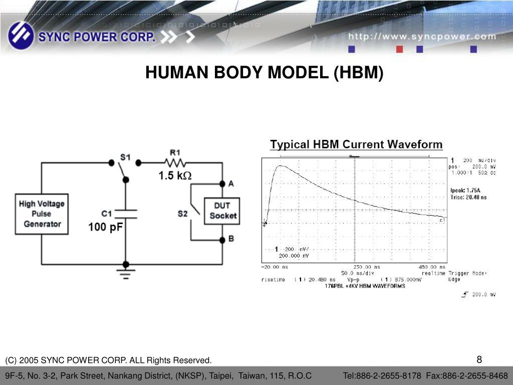 HUMAN BODY MODEL (HBM)