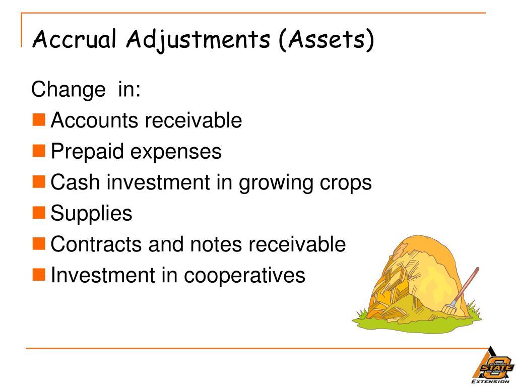 Accrual Adjustments (Assets)