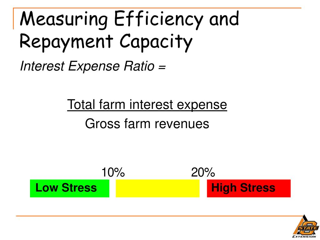 Measuring Efficiency and Repayment Capacity