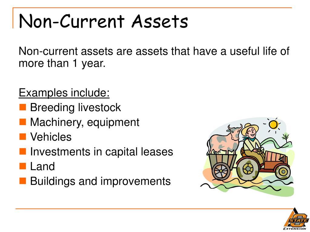 Non-Current Assets