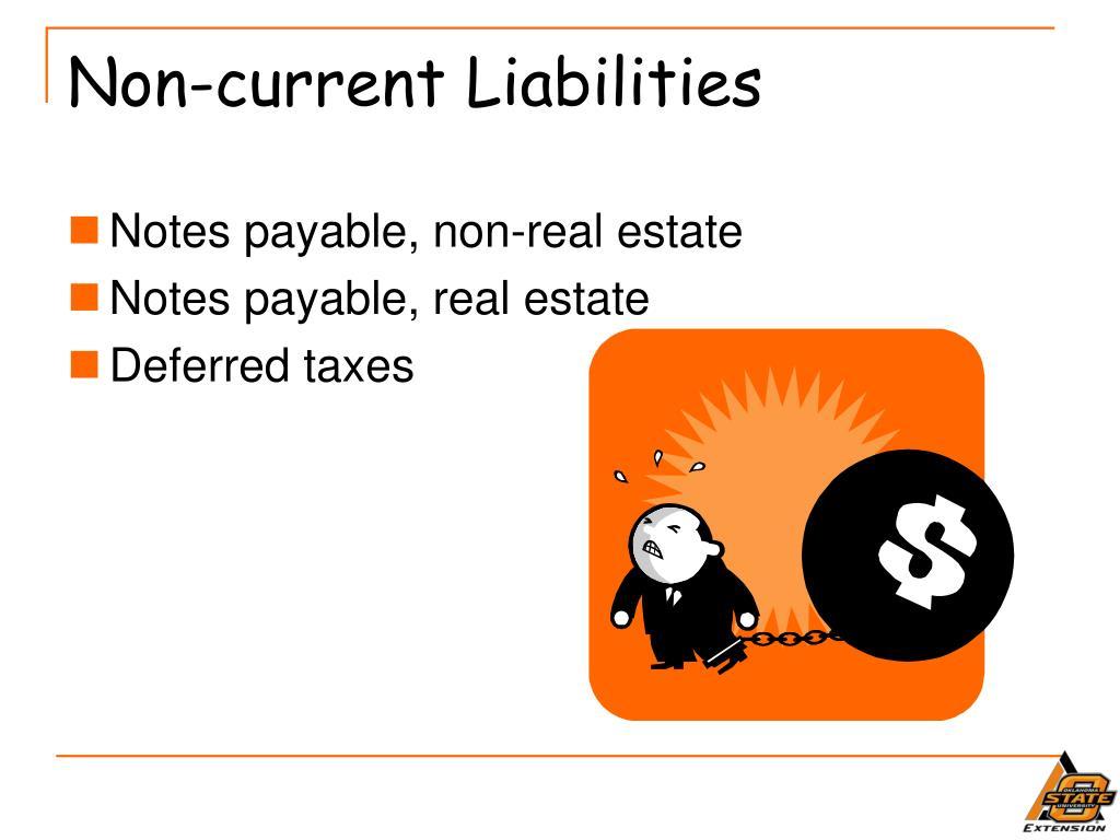 Non-current Liabilities