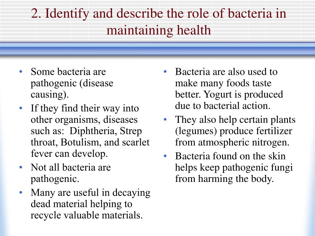 Some bacteria are pathogenic (disease causing).