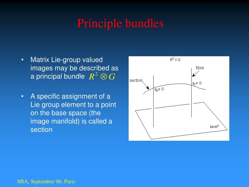 Principle bundles