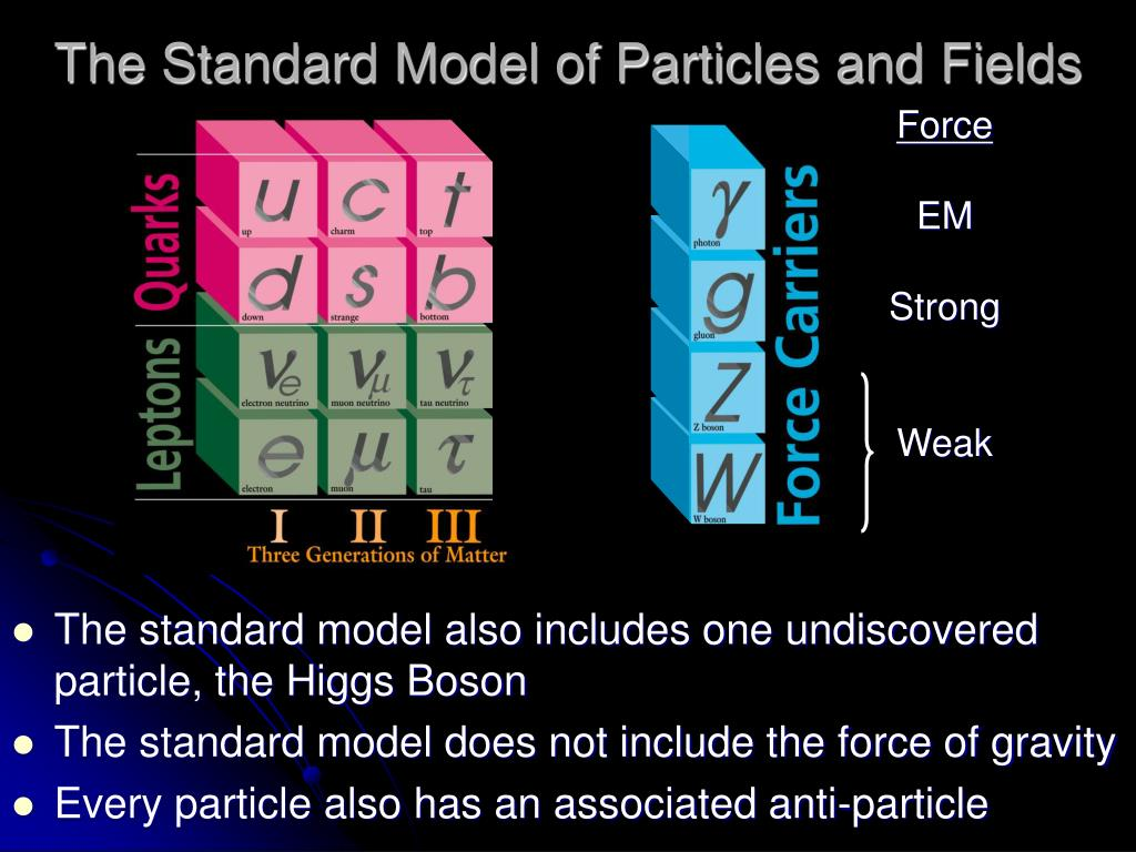 The Standard Model of Particles and Fields
