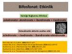 bifosfonat etkinlik