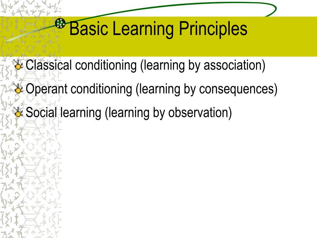 Basic Learning Principles