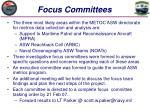 focus committees