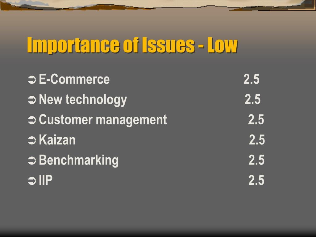 Importance of Issues - Low