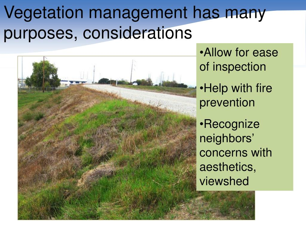 Vegetation management has many purposes, considerations