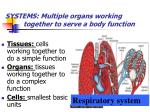 systems multiple organs working together to serve a body function