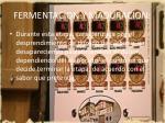 fermentacion y maduracion