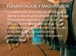 fermentacion y maduracion10