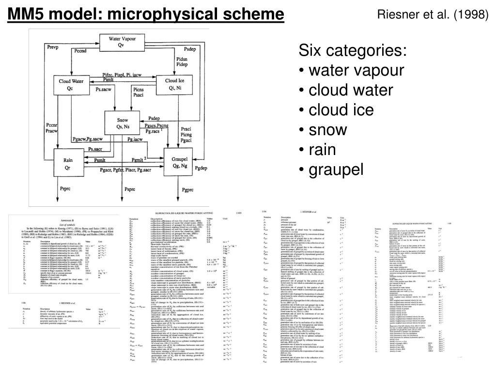 Riesner et al. (1998)