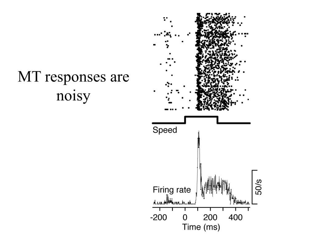 MT responses are noisy