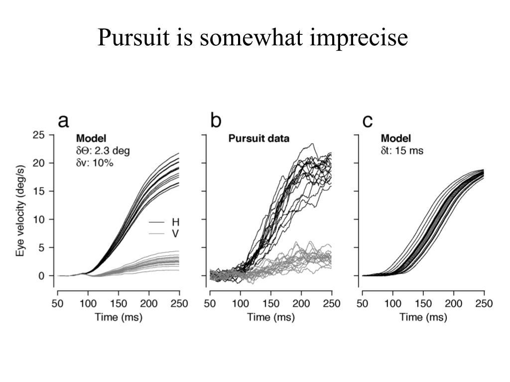 Pursuit is somewhat imprecise