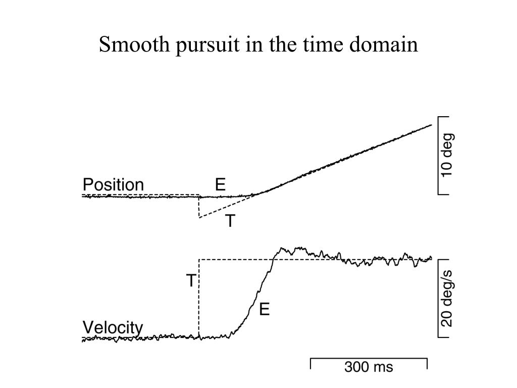 Smooth pursuit in the time domain