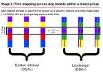 stage 2 fine mapping across dog breeds within a breed group