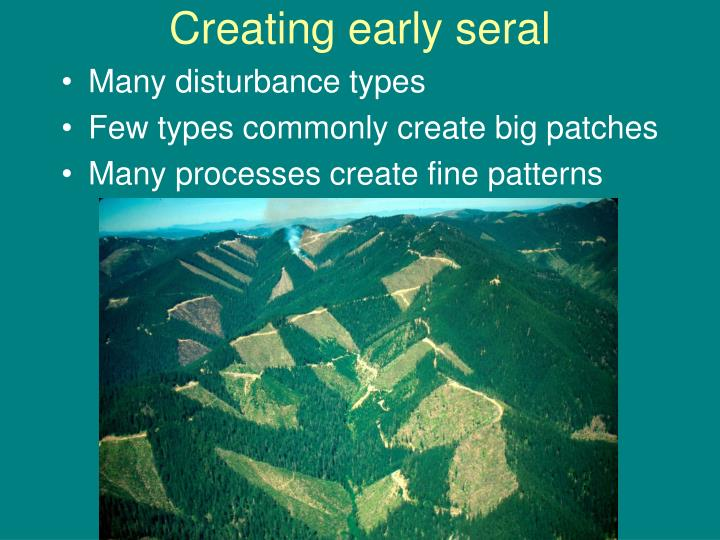 Creating early seral