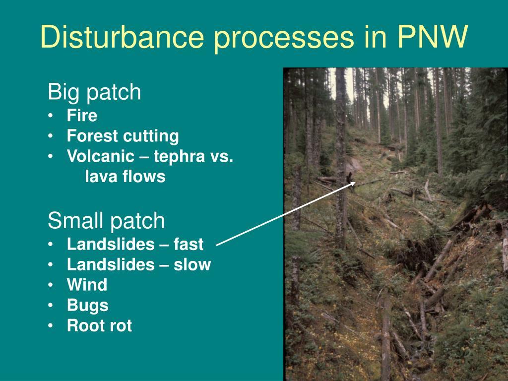 Disturbance processes in PNW