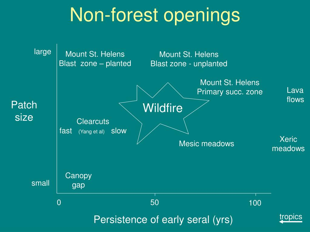 Non-forest openings