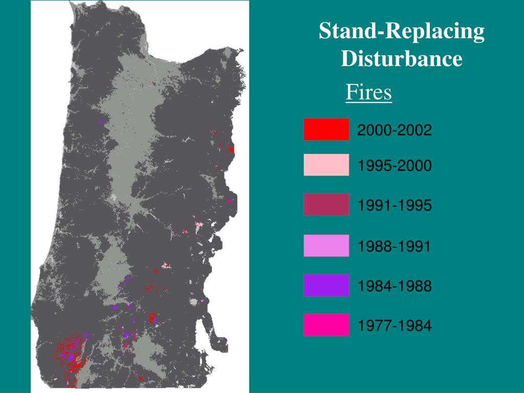 Stand-Replacing Disturbance