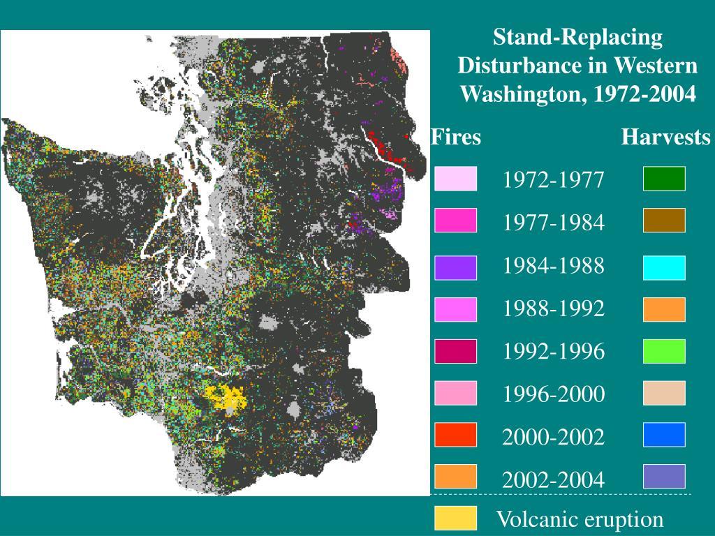 Stand-Replacing Disturbance in Western Washington, 1972-2004