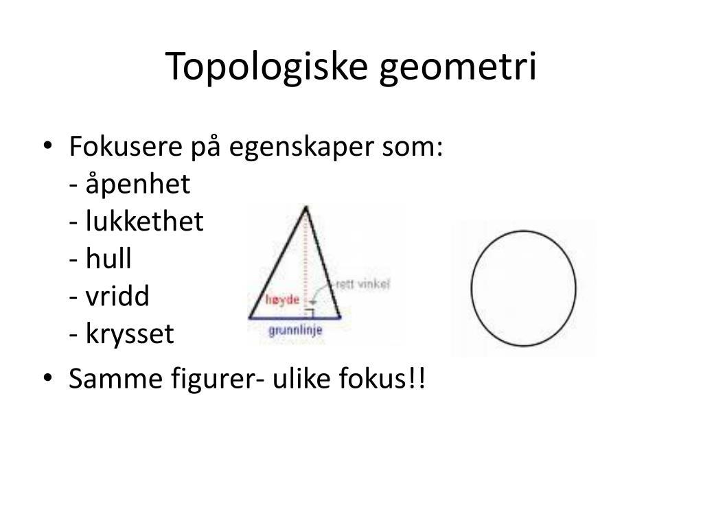 Topologiske geometri
