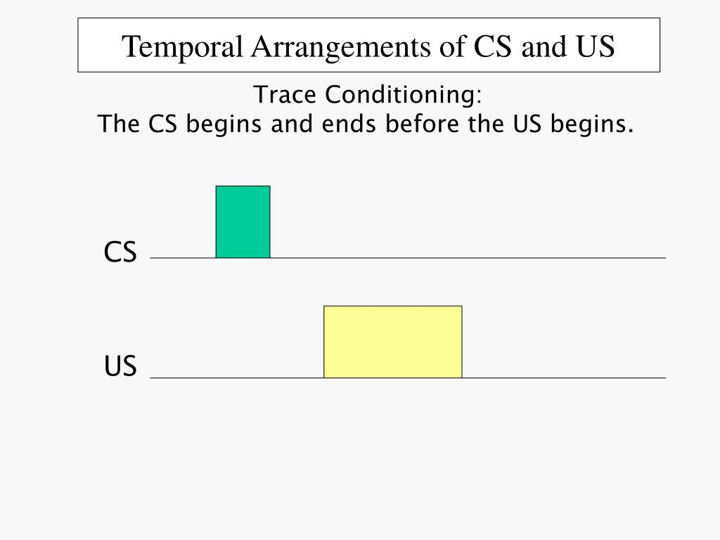 Temporal Arrangements of CS and US
