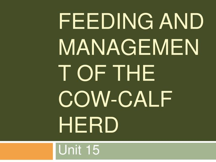 feeding and management of the cow calf herd n.