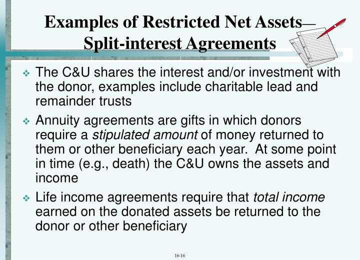 Examples of Restricted Net Assets