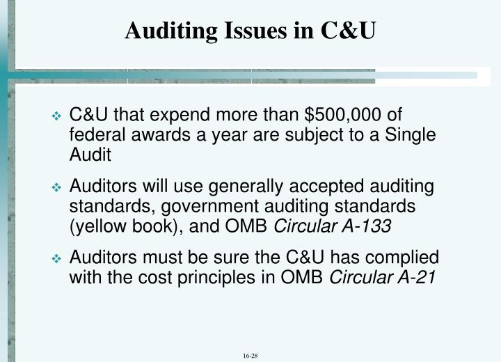 Auditing Issues in C&U