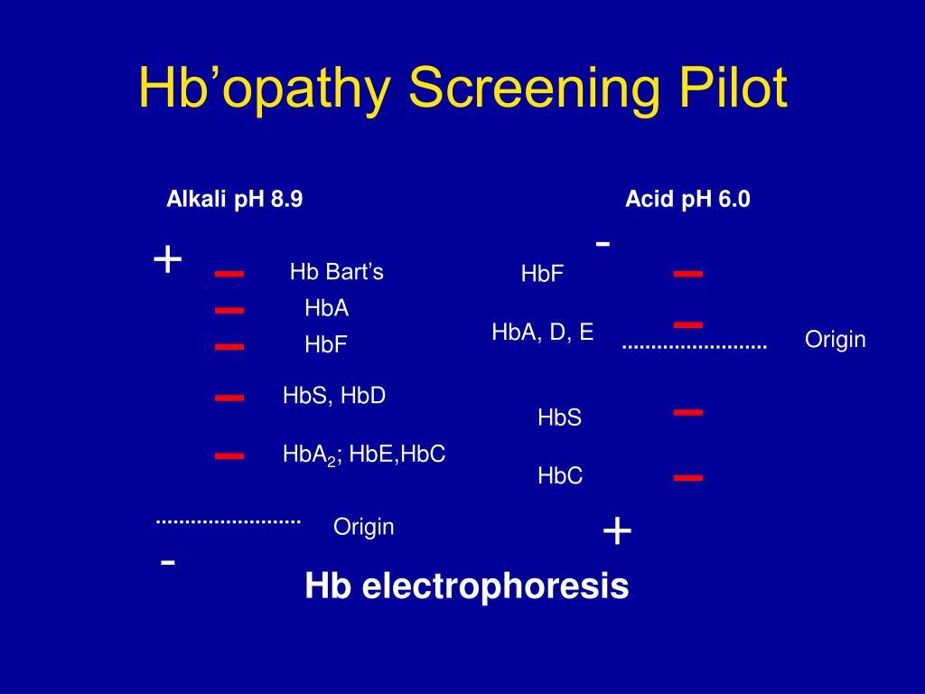 Hb'opathy Screening Pilot