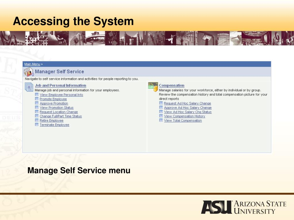 Accessing the System