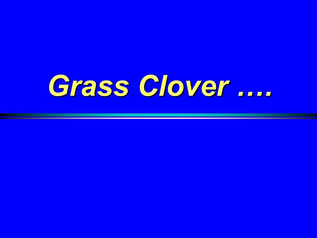 Grass Clover ….