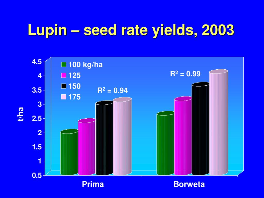 Lupin – seed rate yields, 2003