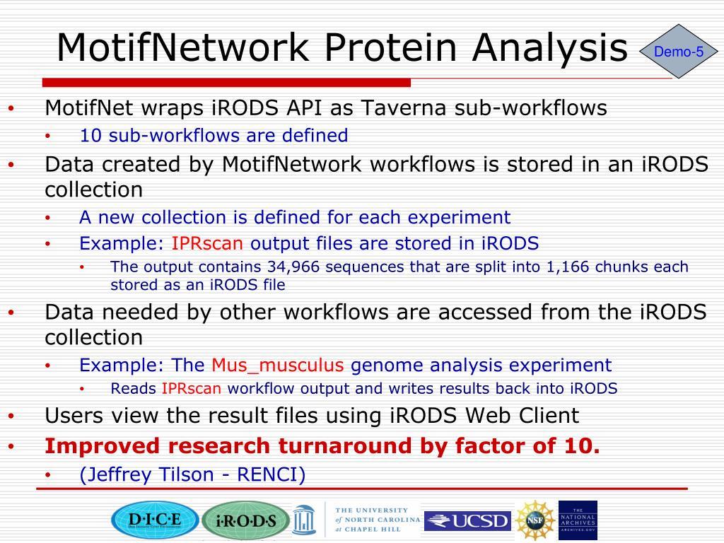 MotifNetwork Protein Analysis