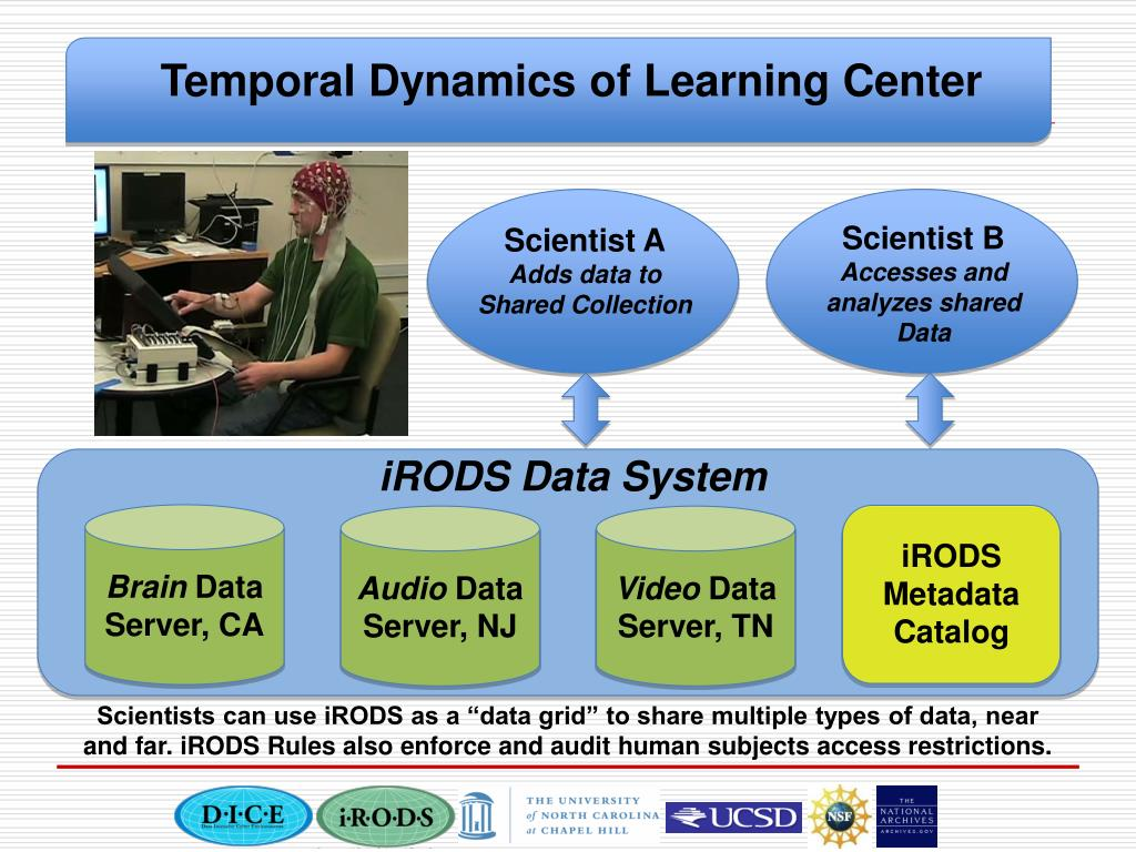 Temporal Dynamics of Learning Center